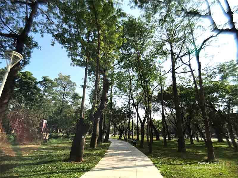 大東濕地公園-1
